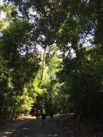 Hutan konservasi Tanjung Tuan, Malaysia